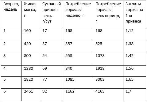 таблица роста бройлеров на птицефабрике