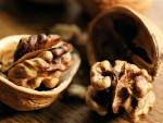 грецкий орех как бизнес
